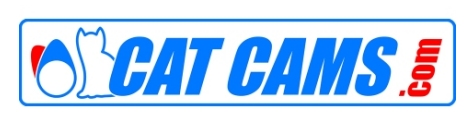 Catcams logo
